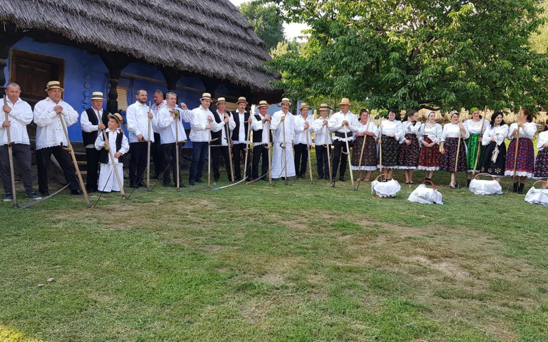 Clacă la coasă cu groşenii la Muzeul Satului
