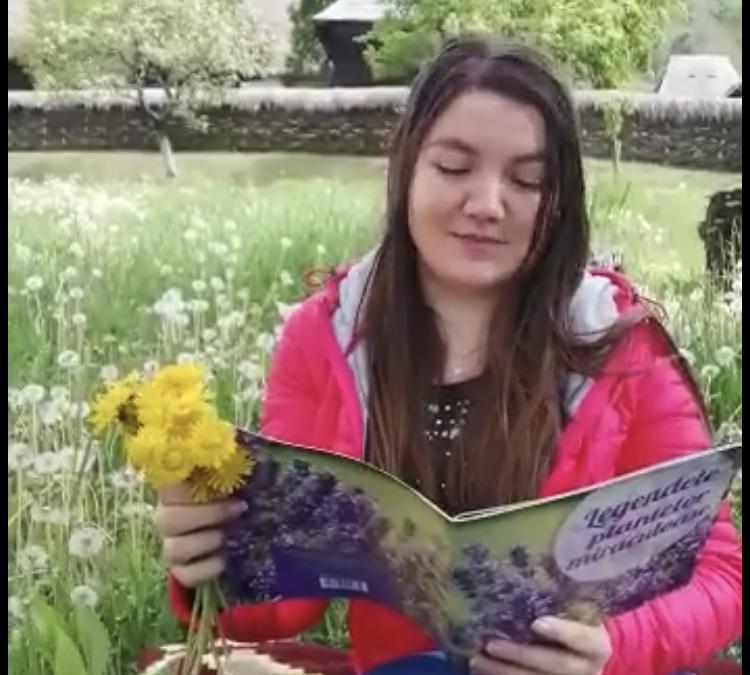 Atelierul de lectură  – Povestea florii de păpădie